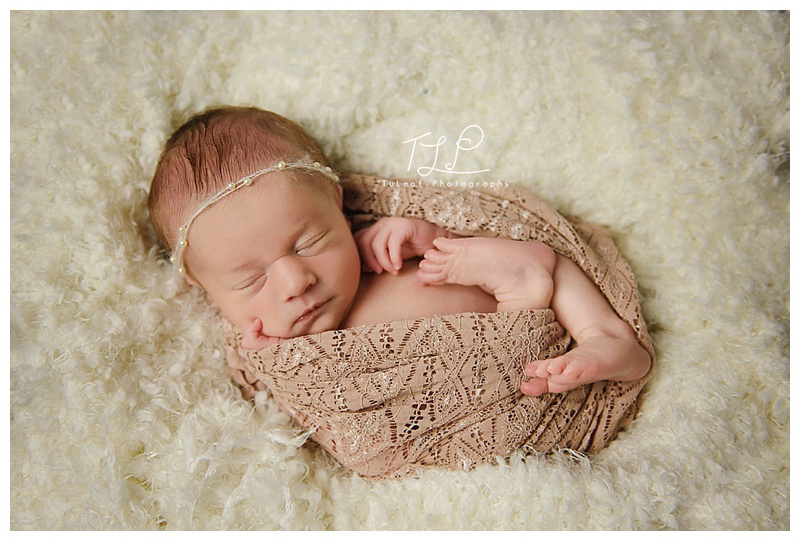 newborn photographer albany wrap