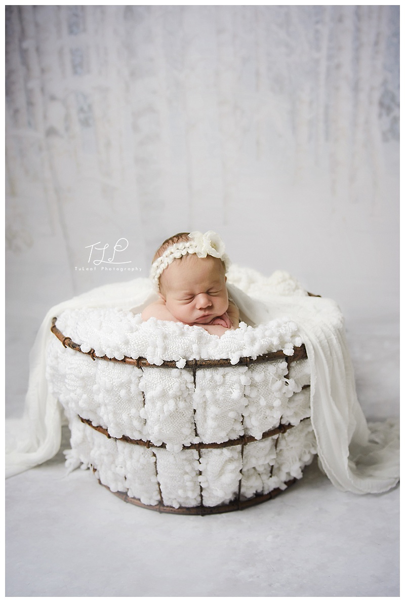 baby photo newborn session snow