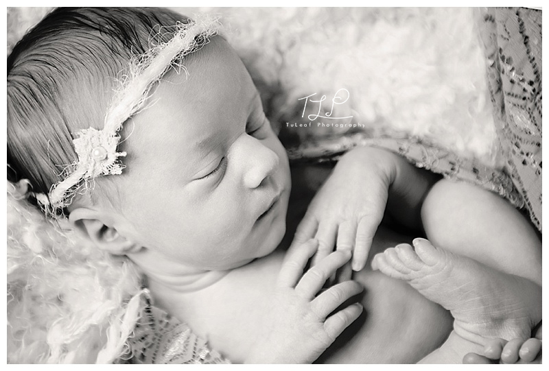 newborn photographer in albany baby photo