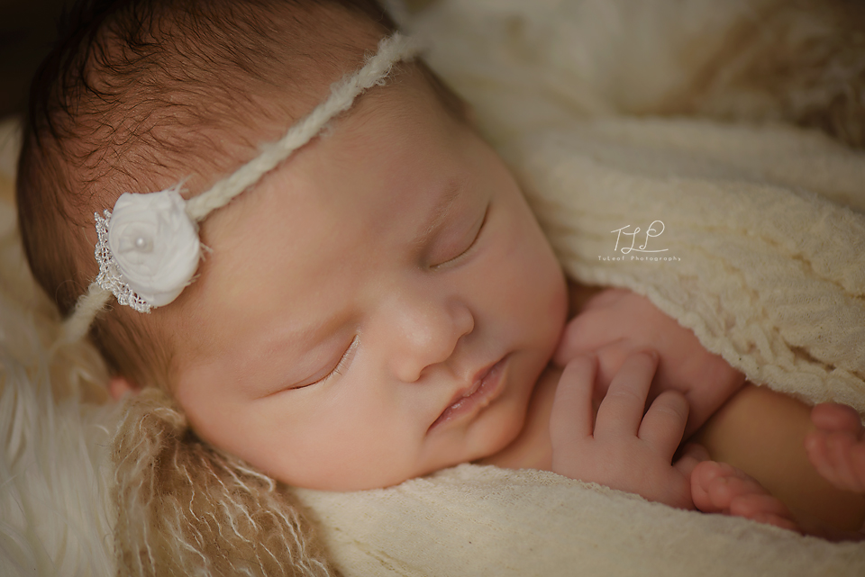 albany newborn photographer baby girl