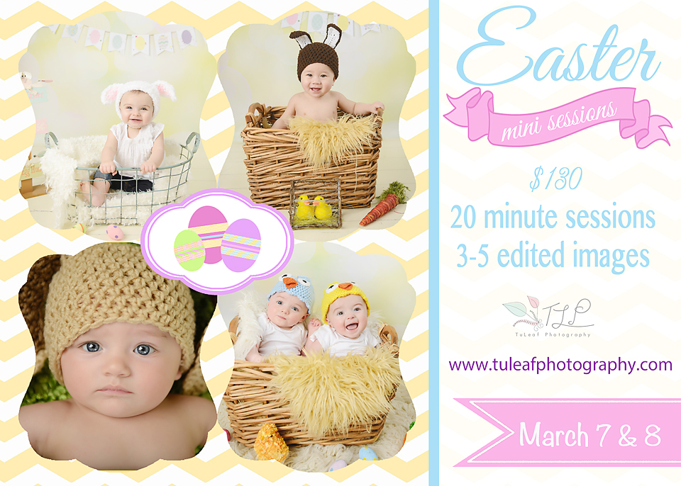 easter mini sessions albany baby photographer