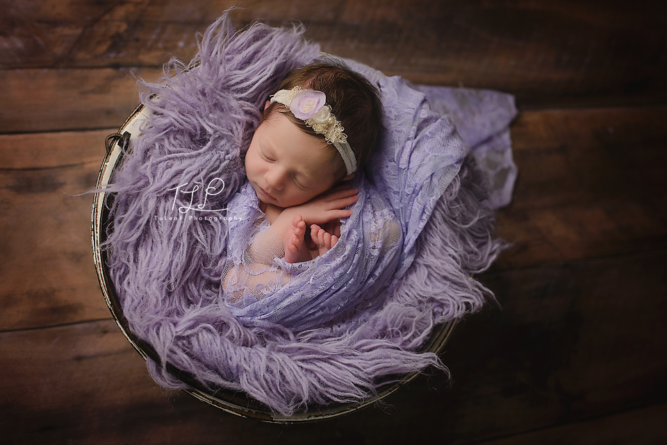 newborn photographer albany lace wrap