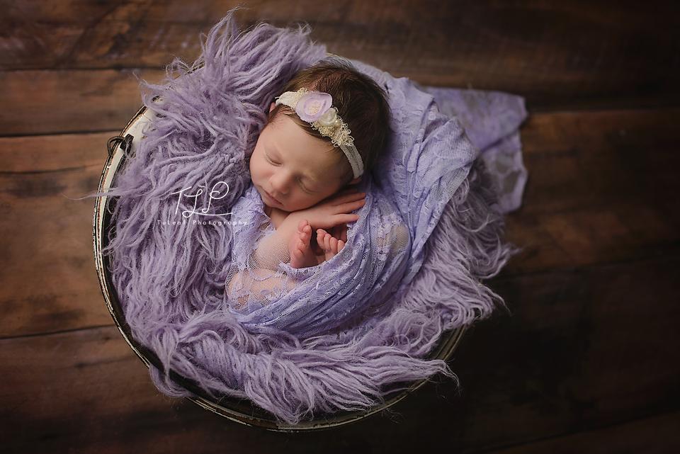 newborn photographer albany lace wrap