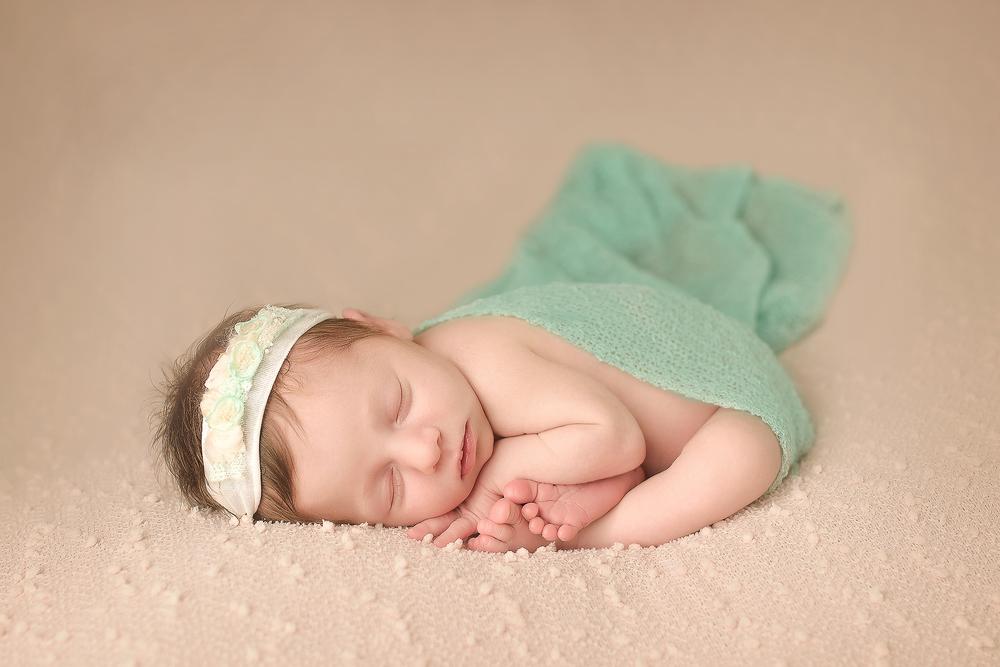 albany newborn photo taco wrap