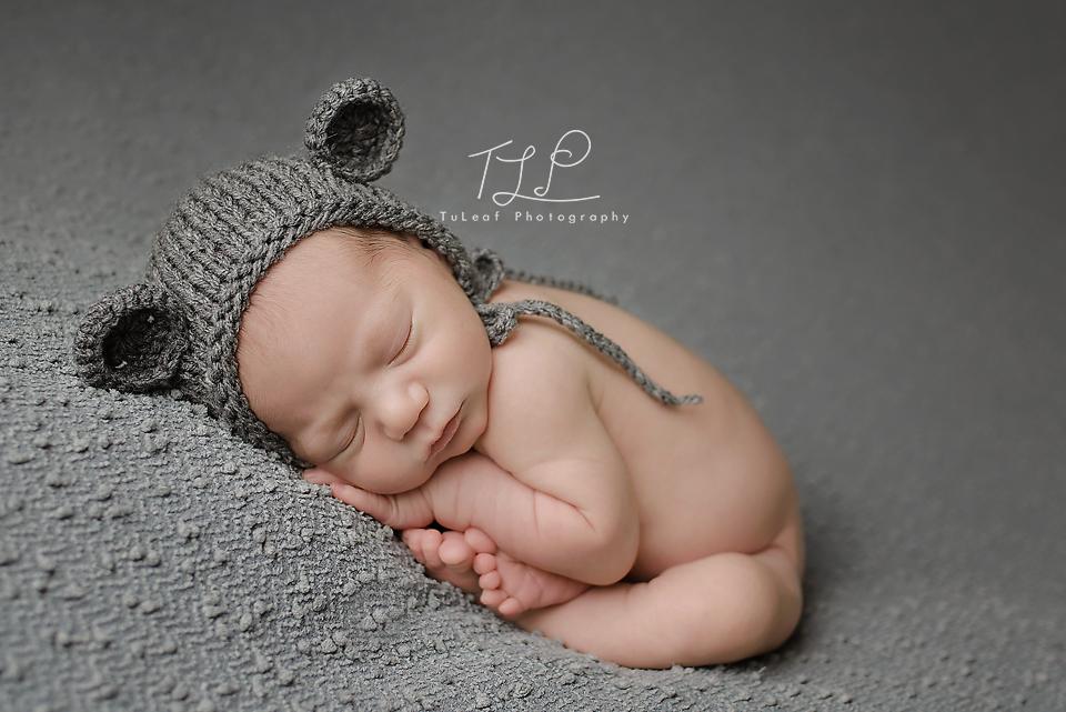 newborn photographer albany bear bonnet