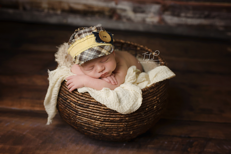 Albany baby photographer baby in basket