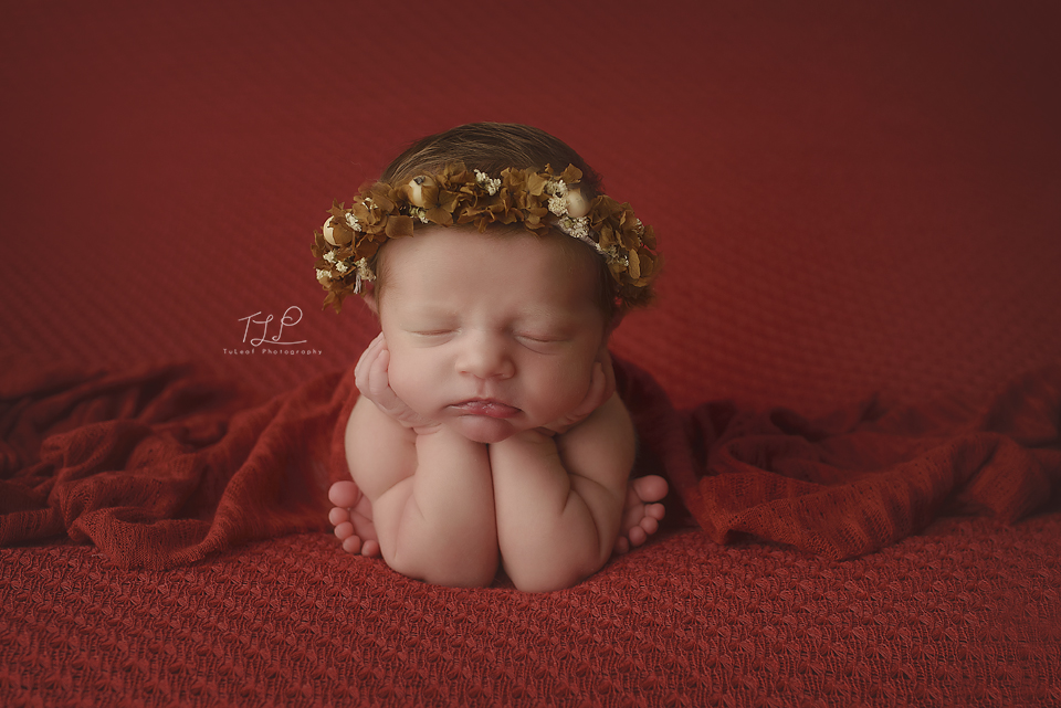 albany newborn photographer red crown and blanket