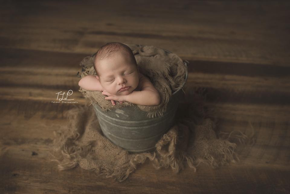albany newborn photographer baby in bucket