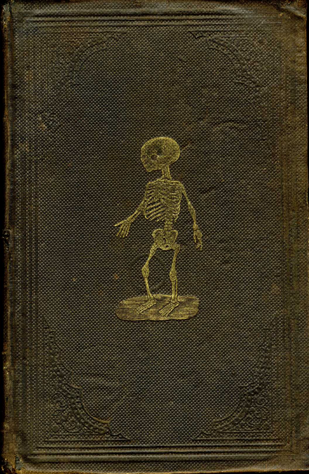 suicideblonde: Cover of Henry H. Smith's Anatomical Atlas of the Human Body, 1859