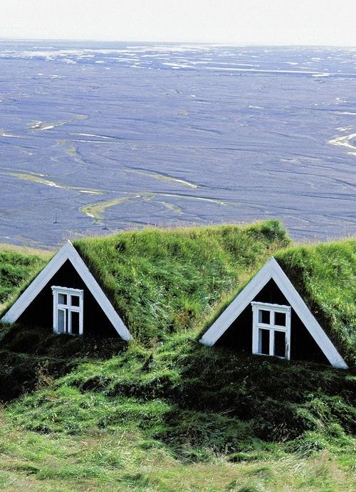 themanwiththesmirk: Skaftafell, Iceland