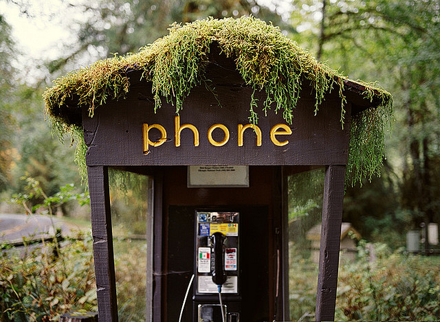 scarlet-fields: Hoh_Rainforest_phonebooth by Jenny J on Flickr.