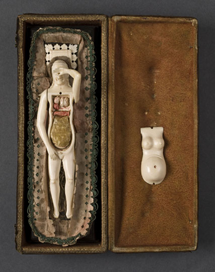 leticialives: @kristinejoy —- ~~~!!!!! professorquack: Female Anatomical Figure Probably Italian, 18th century Science Museum/SSPL A642635-6