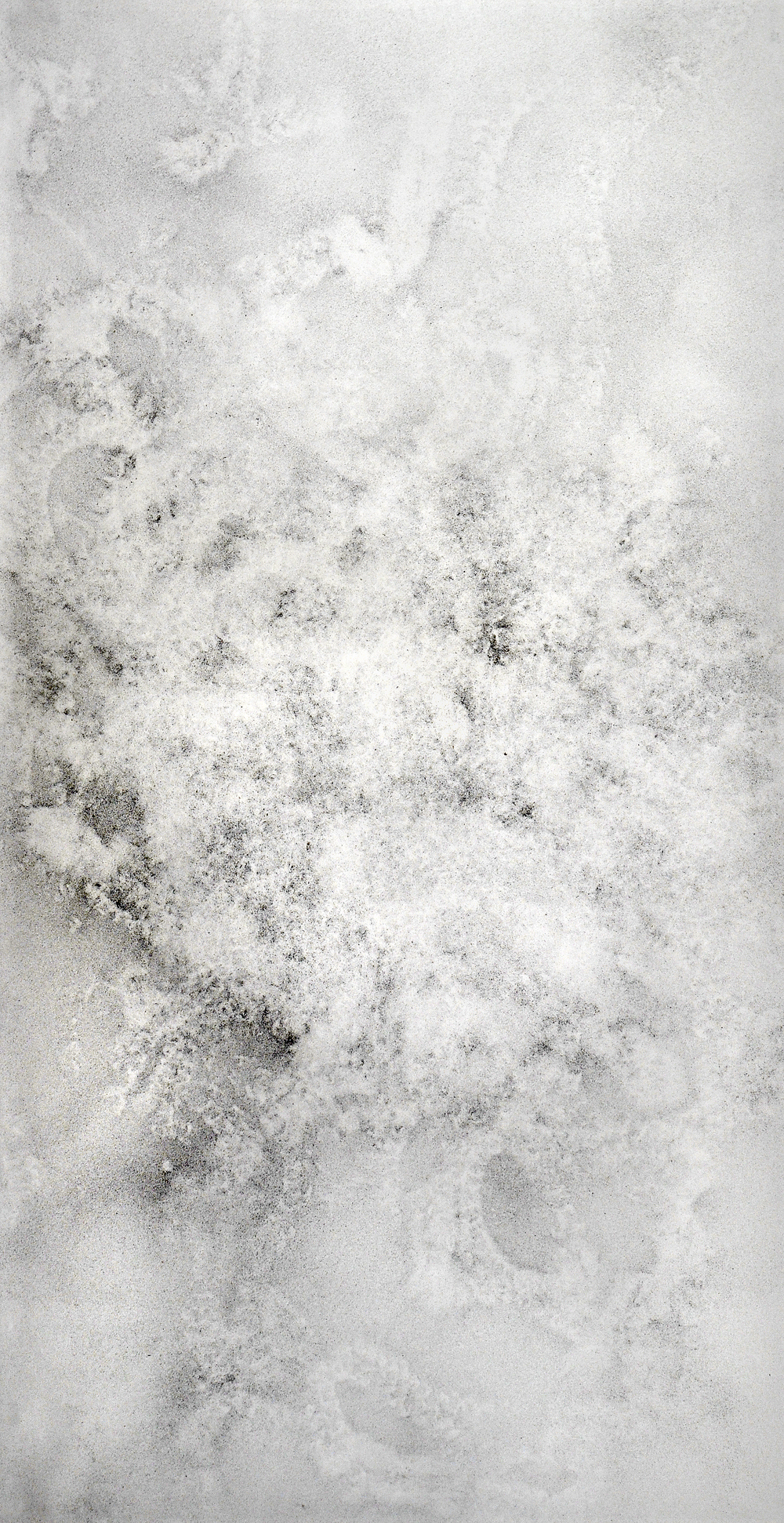 "Moth Drawing, charcoal dust on paper, 82""x42"", 2006"
