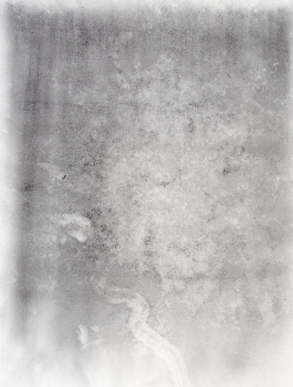 Moth drawing, charcoal dust on paper, 2006