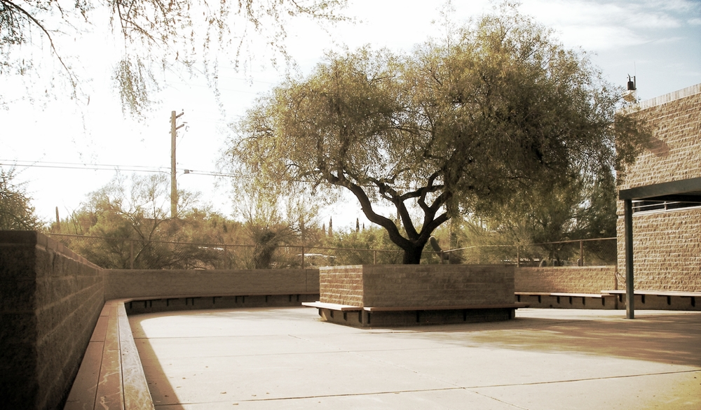 Tucson soil is the foundation of Kittle Design and Construction.