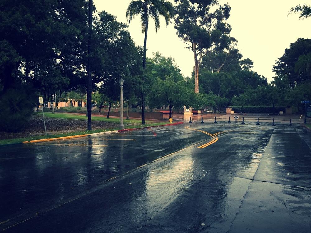 Balboa park in the rain. it was amazing.