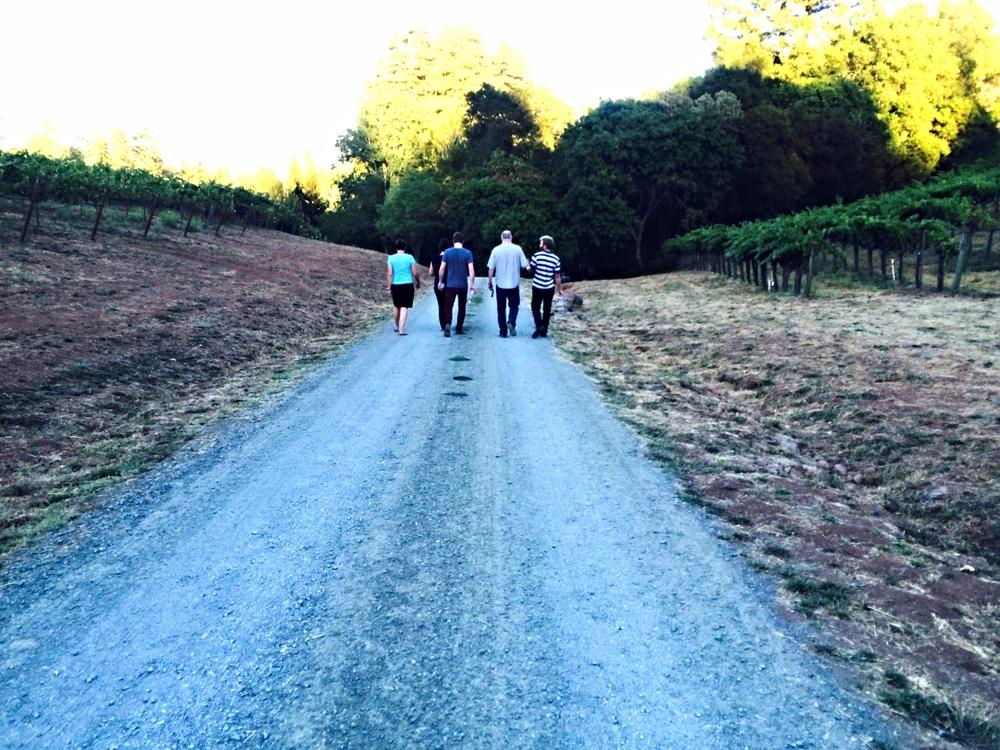 Family in Vineyard
