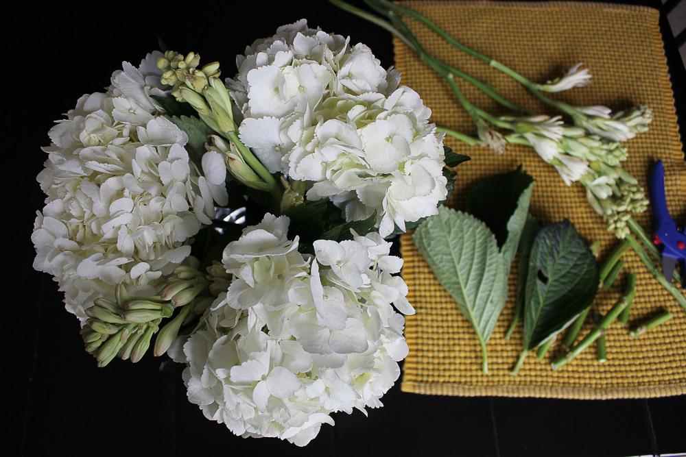 Hydrangeas and tuberose