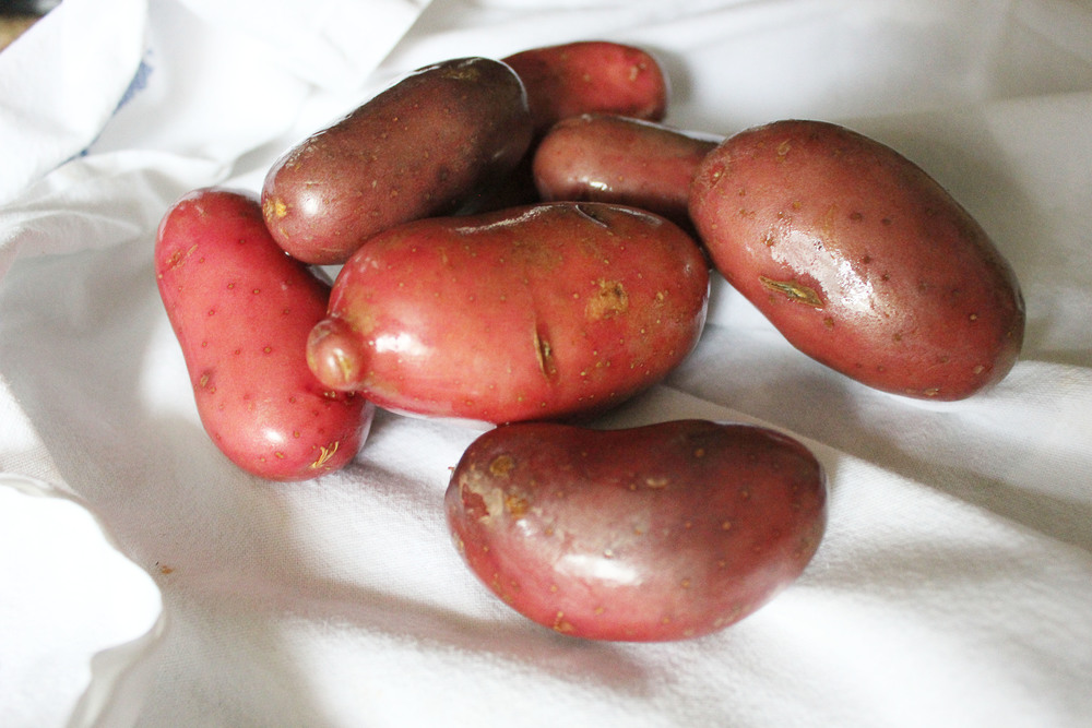 Parisian Dinner: Red potatoes - www.fancycasual.com
