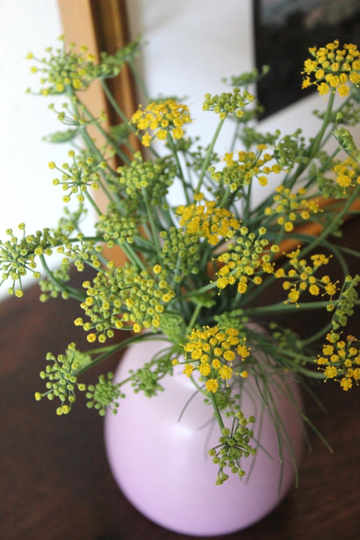 Fennel flowers in Heath Ceramics bud vase