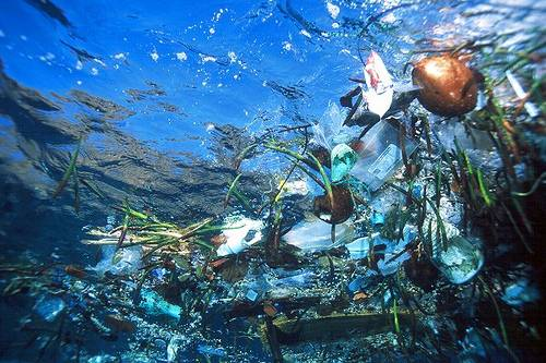 Part of the pacific garbage patch. Public domain image.