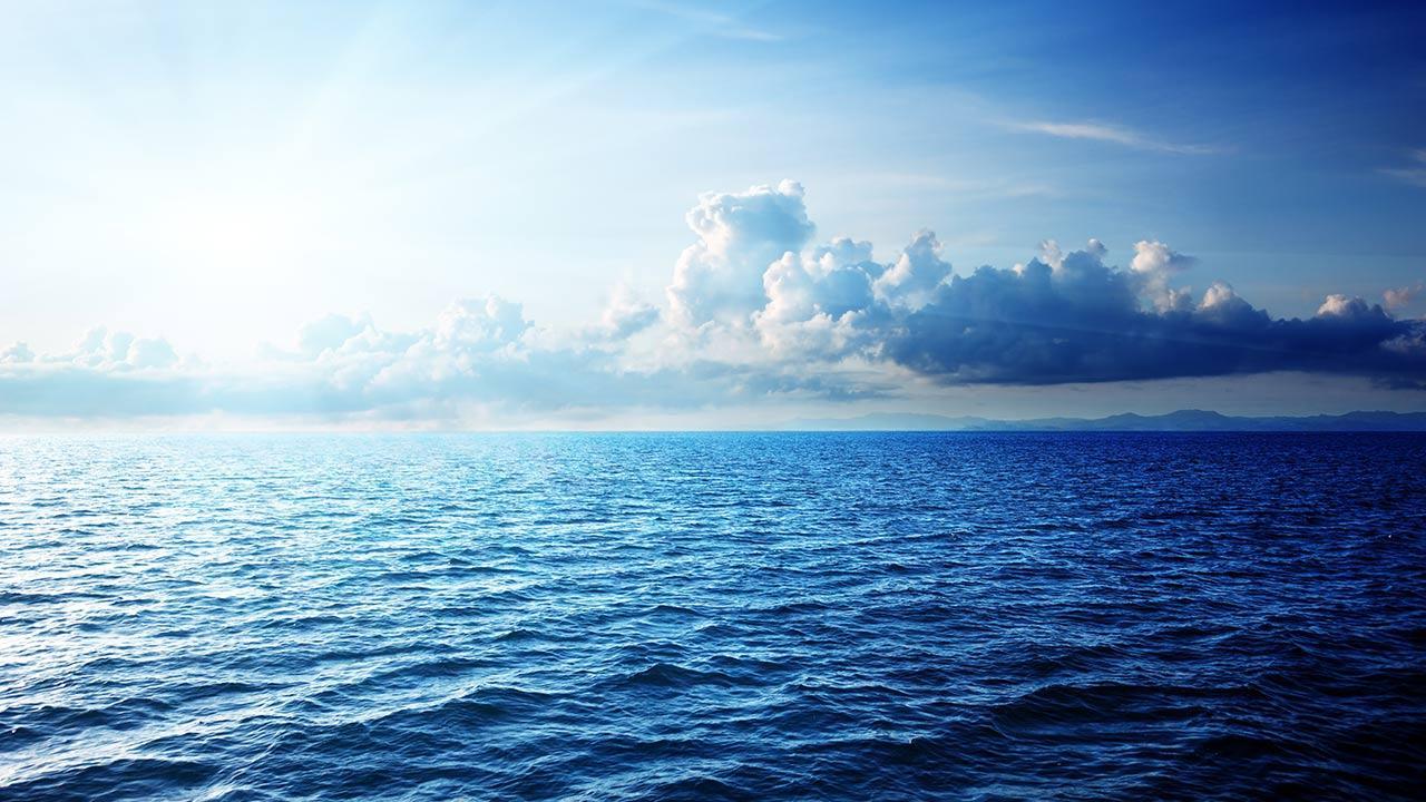 millennium oceans prize millennium campus network