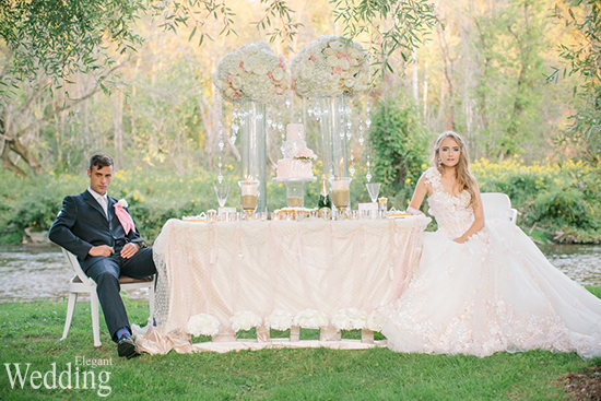 550x367xELEGANT-WEDDING-TABLE-SETTING-COUPLE-GROOM-BRIDE-BEAUTIFUL.jpg.pagespeed.ic.ns2LOMGpjJ.jpg