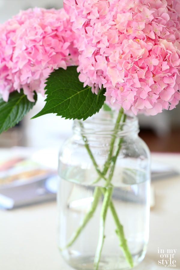 http://inmyownstyle.com/2014/07/how-to-cut-hydrangeas-so-they-wont-wilt.html    Summer Flower: Hydrangeas