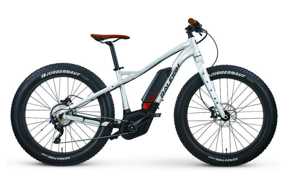 Electric_Bikes_18_Raleigh_Magnus_iE_Flat.jpg