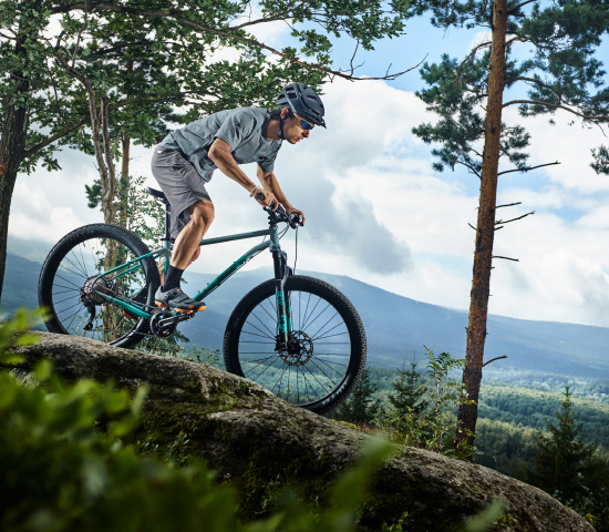 Breezer Mountain Bike