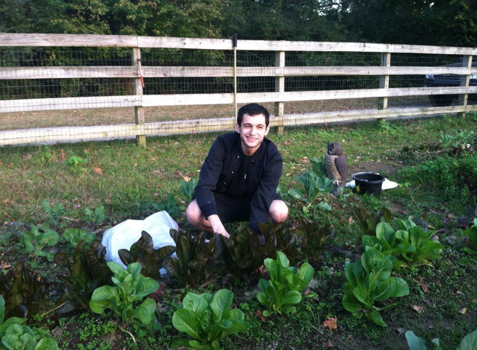 Chef Josh's fresh organic garden