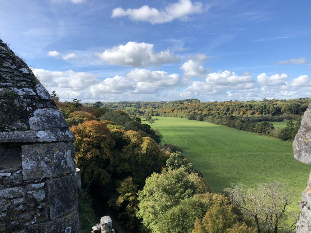The view from atop blarney castle