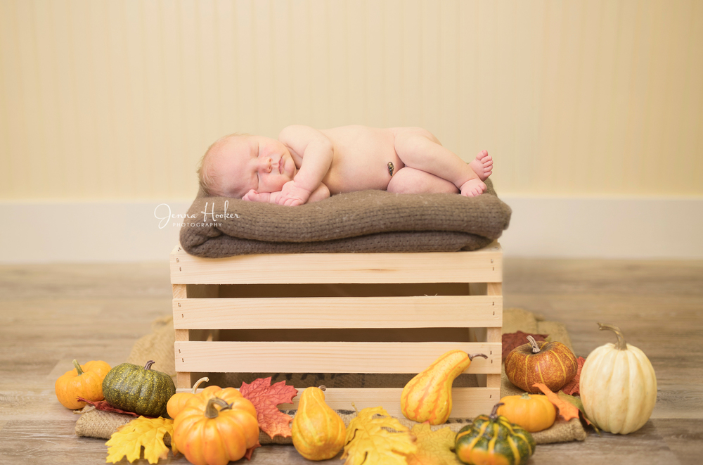 pumpkin baby photos
