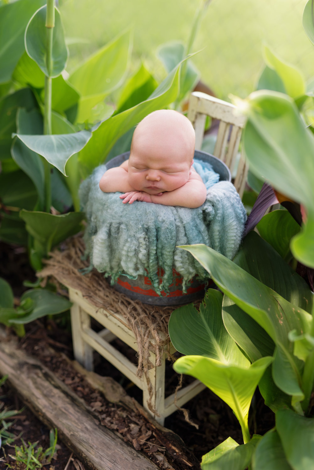 newborn boy outdoors el campo texas