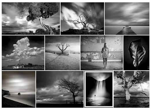 fine art photographers websites