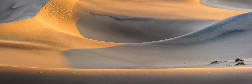 Dunes 5, Morning Glory