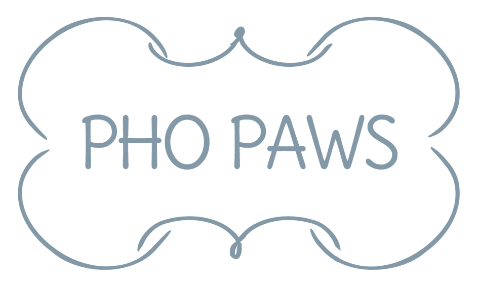 Pho Paws | Photography & Dog Training in Central Florida