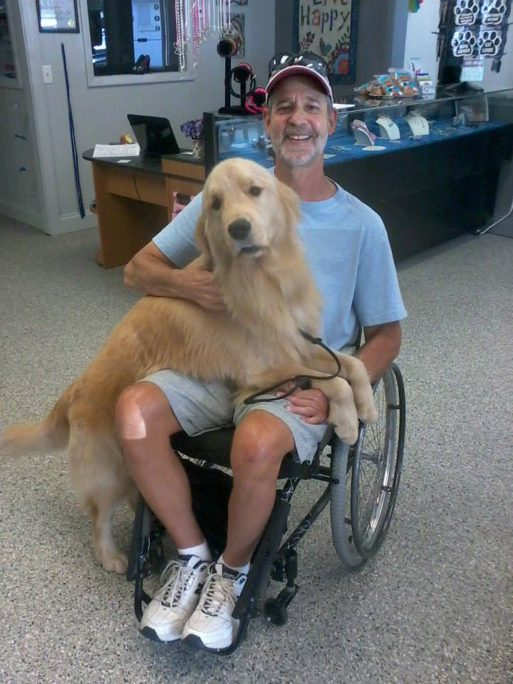 Salton was small dog aggressive but now he is a service dog