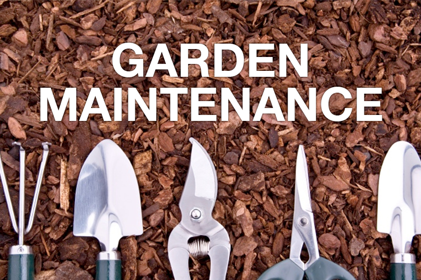 -  Mowing & Edging the lawn  -  Trimming the hedges and shrubs -  Weeding & Cultivation - Fertilizing the lawn