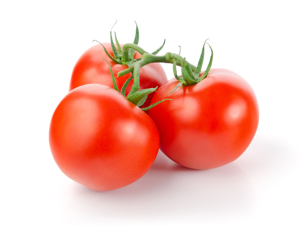 Tomato -
