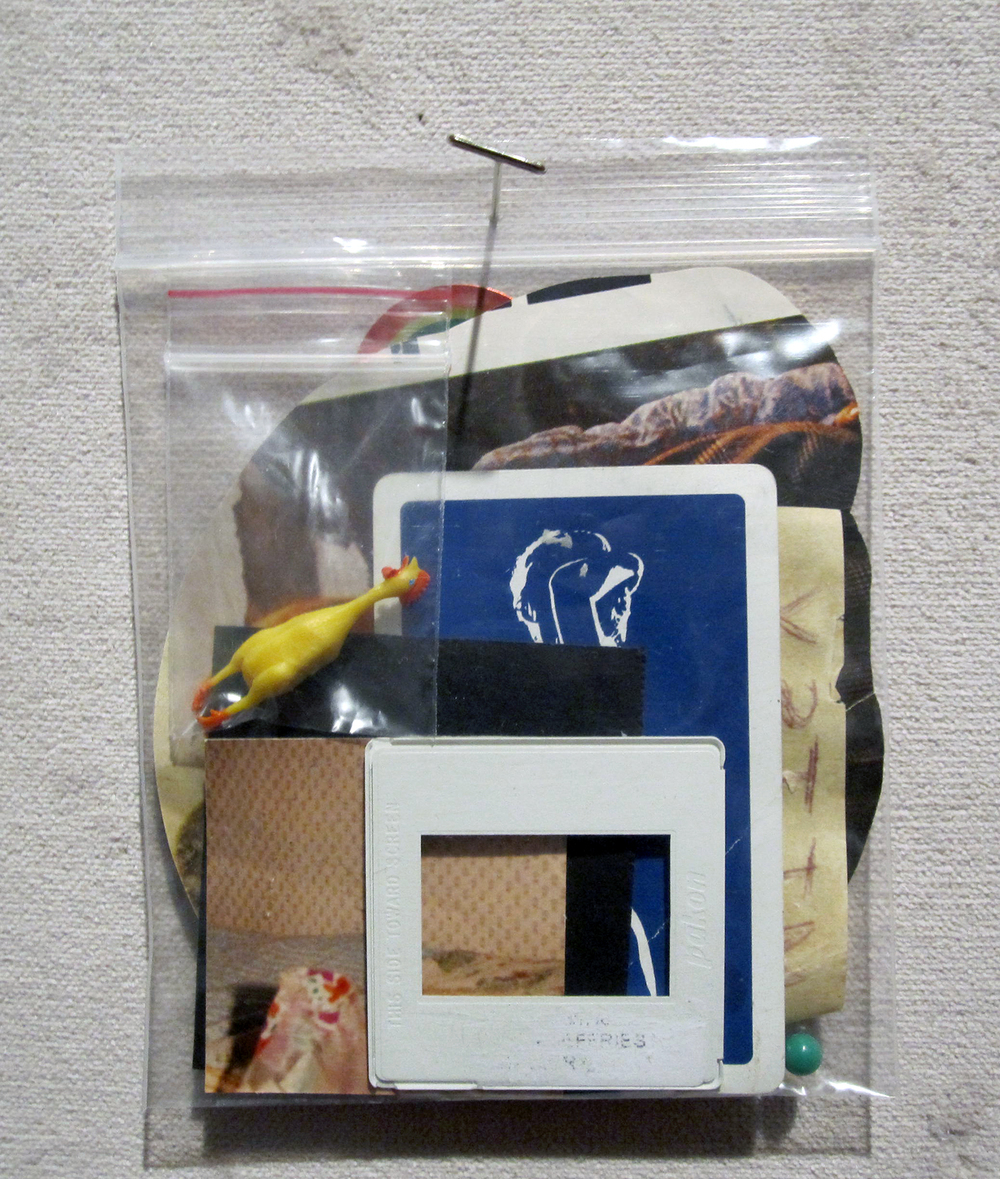"""baggy 03 (griffin)"" ephemera in plastic bag, 2013  (from ""WE ARE HERE"", Grenfell Gallery, Corner Brook, NL)"