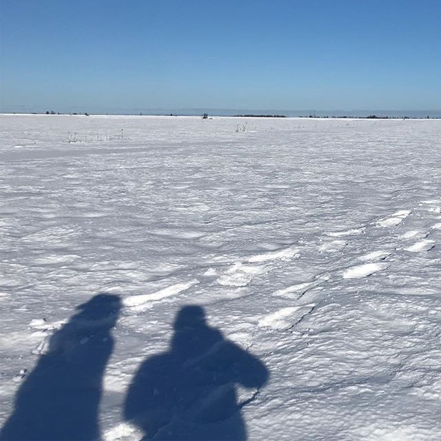 snowshoeing on the marsh is a thing I like to do