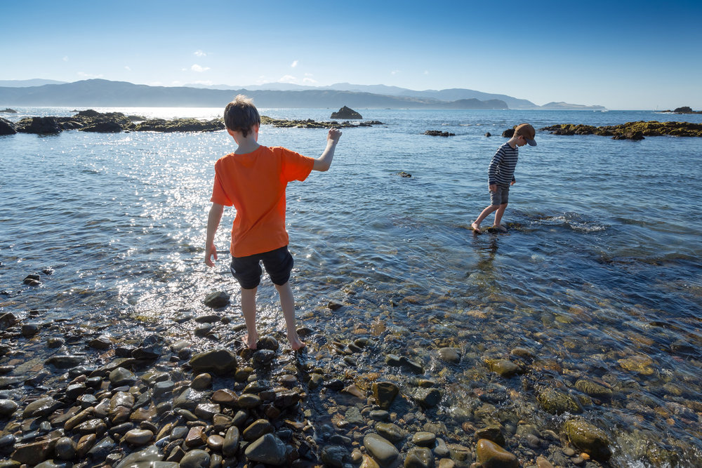 Boy+with+dark+hair+and+orange+shirt+(9+years)+and+boy+with+cap+(7+years)+paddle+in+the+sea+on+a+summer+morning+in+Breaker+Bay+Wellington+New+Zealand.jpg