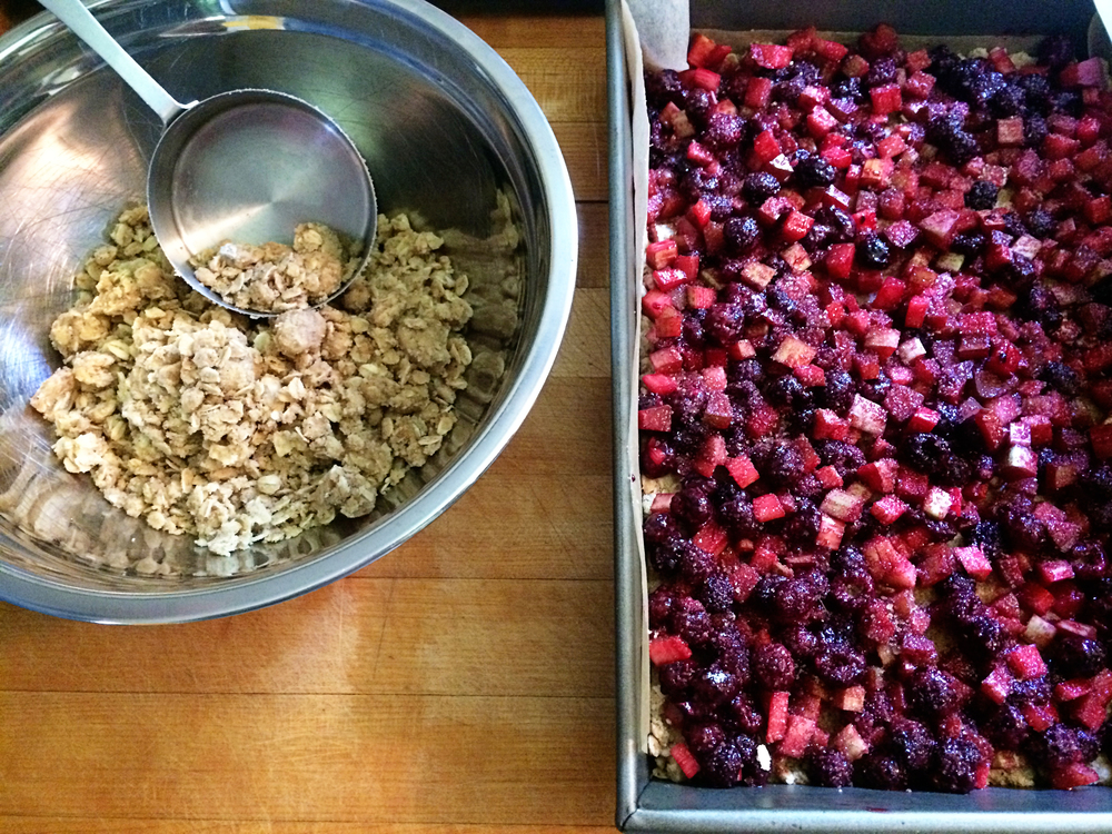 I made  raspberry rhubarb crisp bars  (with our home-grown and frozen purple raspberries).