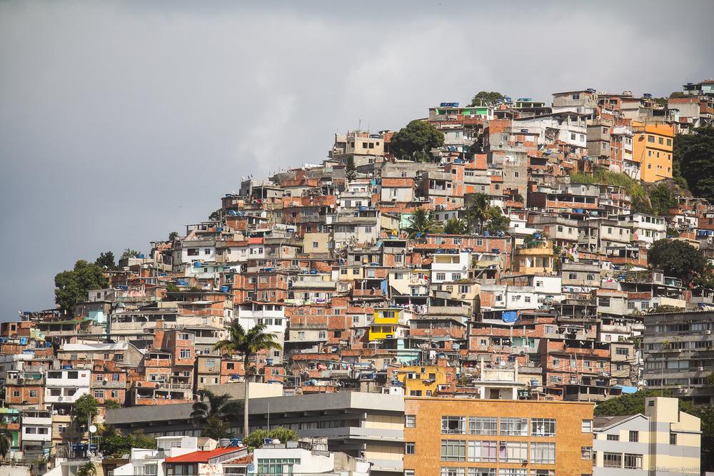 RArnold_SSW_RArnold_Brazil_2013_2824.jpg