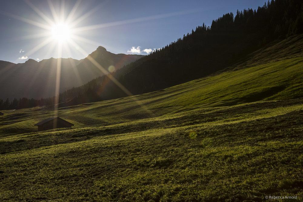 Sunset Meadow, Austria