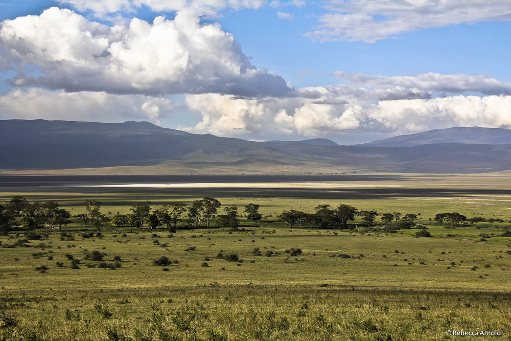 Savannah Basin, Tanzania