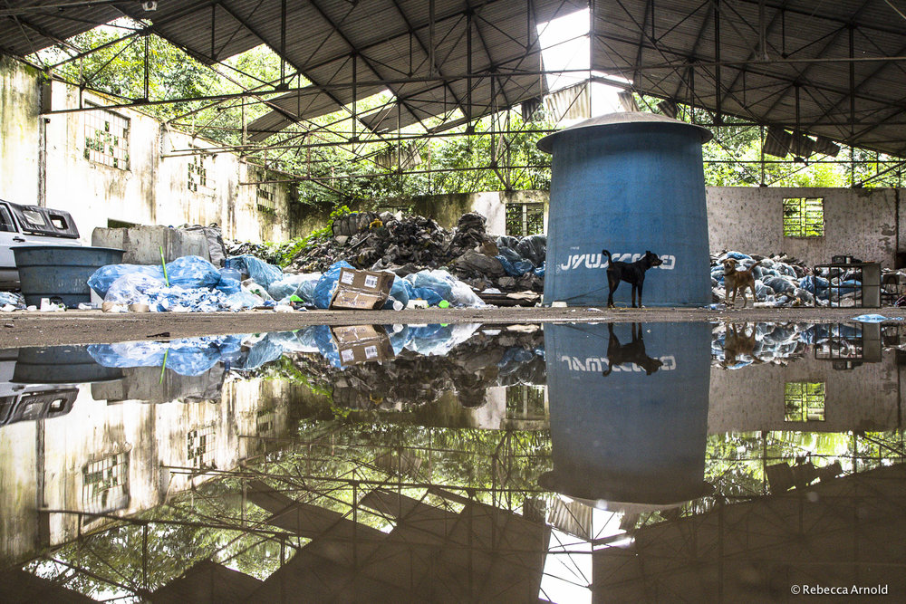 Recycling Reflections, Brazil