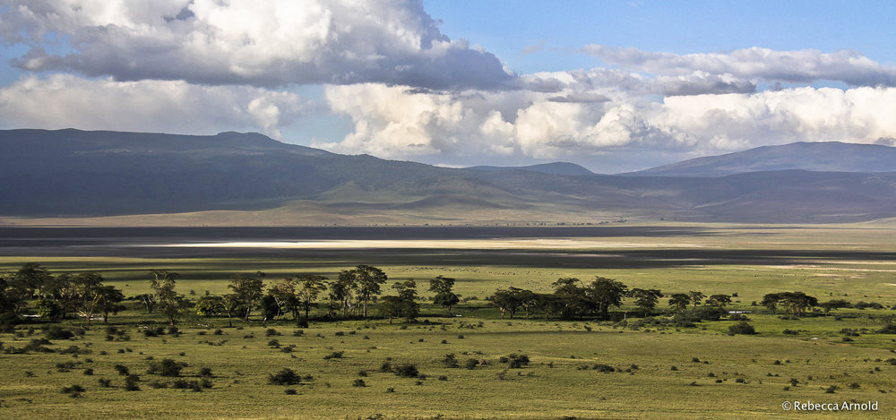 Ngorongoro Savannah, Tanzania  PURCHASE Archival Pigment Print