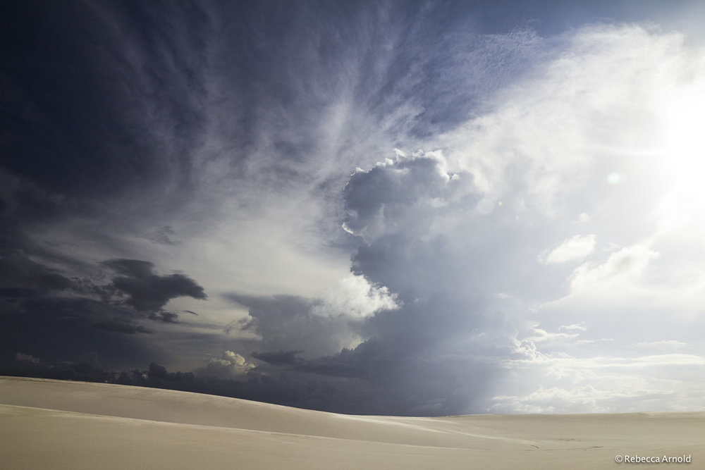 "Desert Plume, Brazil 2013  16"" x 24"" 